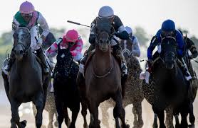 2013 Belmont Stakes Results Chart Belmont Stakes 2019 Replay Results And Payouts