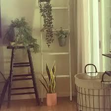 modernfarmhousedecorating - Instagram stories, photos and videos