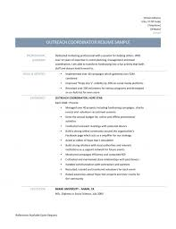 Resume Templates Ultimate Media Planner Example On Outreach