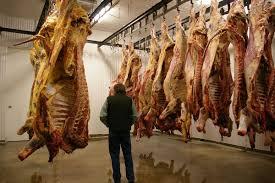 meat cutting house surface ile ilgili görsel sonucu