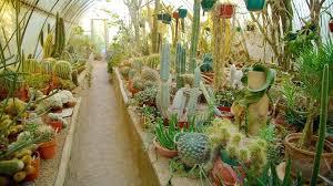 moorten botanical garden botanical garden and moorten botanical garden palm springs ca