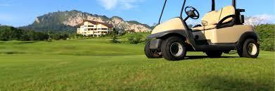Golf Cart Batteries Interstate Batteries