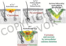 Fluoride Ions In Acidic Medium Corrosive And Toxic Like