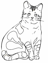 Small Picture Himalayan Animal Images Of Cats Himalayan Coloring Pages Cats