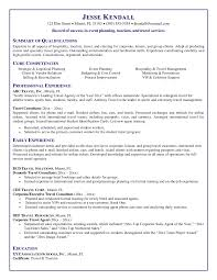 insurance sman resume travel agent job description and duties travel agent resume infovia net