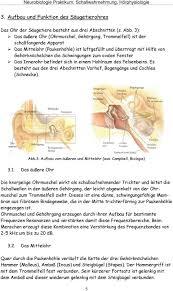 Neurobiologie Praktikum Schallwahrnehmung Hörphysiologie