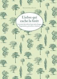 Larbre Qui Cache La Forêt Les Mots Des Arbres Dans Notre Langue Expressions Proverbes Citations