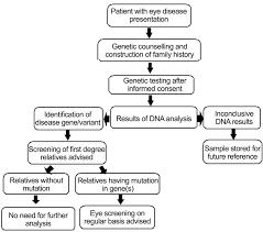 Eye Diseases Chart Flow Chart For Incorporating Genomics Care In Eye Diseases