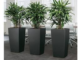 office planter boxes. gardening in restricted spaces indoor planter boxes world of office