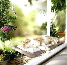 diy cat window perch cat window perch this window lounger adorable ways to make your home diy cat window perch