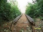 imagem de Garruchos Rio Grande do Sul n-14