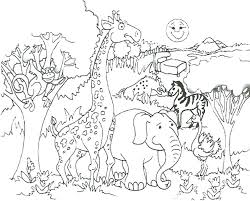 zoo coloring page pages free to print for kindergarten