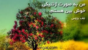Image result for ‫سخنان مثبت اندیش‬‎