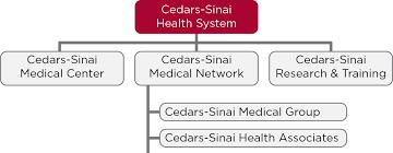 Cedars Sinai Organizational Chart 16 Uncommon Cedars Sinai Organizational Chart