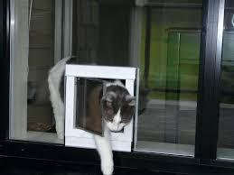 sliding glass cat door measuring for the correct pet door size sliding glass dog door home