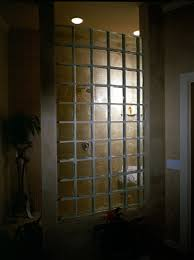 solid glass block from pittsburgh corning in the vista pattern make a statement in this shower
