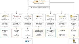 Our Structure Altus Strategies Plc