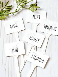dollar tree herb markers with free printable