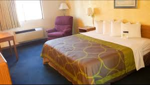 motel6 prospect heights il 1 king bed image