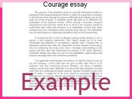 courage essay coursework service courage essay