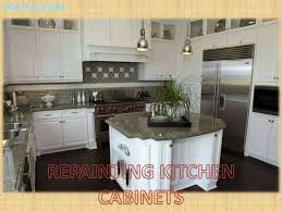 kitchen cabinet brands luxury cabinets wood types finishes oak