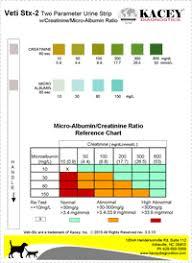 Urine Stick Colour Chart Urine Sticks Colour Chart Rapid Response Urine Dipstick