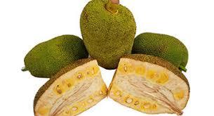 tropical fruits.  Tropical Watch Hu2011Eu2011B Chef Scott Cut And Prepare Jackfruit An Exotic Summer Fruit  Thatu0027s A Sweet Treat Good Source Of Fiber And Tropical Fruits