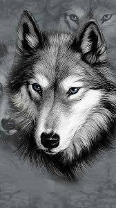 Lone Wolf Wolf Tetování Vlka Zvířata Kresby
