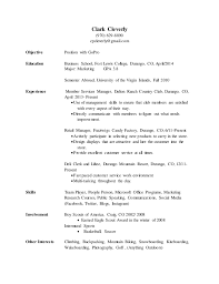 Formats Of A Resume Extraordinary What Is The Format For A Resume Inspiration Resume R