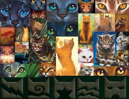 cats collage wallpaper. Fine Wallpaper Warrior Cats Collage Intended Wallpaper I