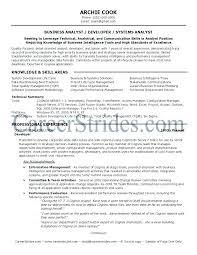 Business Analytics Resume Sample Business Analyst Resume Objective ...