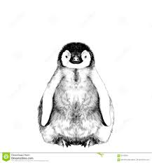 baby penguin drawing. Interesting Baby Download Baby Penguin Sketch Stock Vector Illustration Of Nature  90163831 With Penguin Drawing