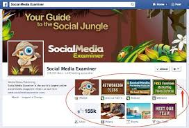 social a examiner page apps