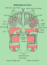 Foot Pressure Points Chart 31 Printable Foot Reflexology Charts Maps Template Lab