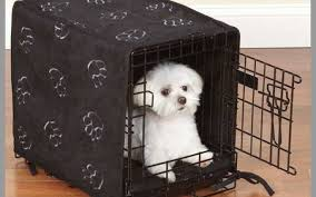 dog crate bedding set prettier pet dreams side door cratewear 3