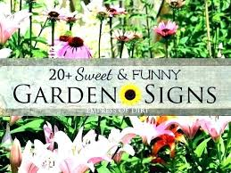 cute garden signs garden sign ideas garden signs sayings garden sayings for signs garden signs ideas