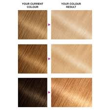Olia Colour Chart Garnier Olia B Maximum Bleach Permanent Hair Dye