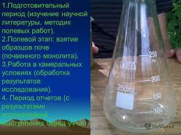 Презентация на тему Отчёт по полевой практике ТЕМА  7 1
