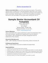 Senior Accountant Resume Sample India Beautiful Resume Format In