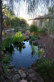 Backyard Ponds 60 Best Images About Ecosystem Backyard Ponds On Pinterest