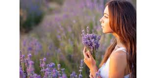 Image result for mood essential oil images