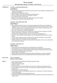 hr administrator resume samples payroll hr resume samples velvet jobs