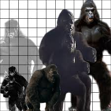 Top 100 Godzilla Vs King Kong Size Chart Queen Bed Size