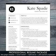 Modern Resume Format Delectable Modern Resume Format Zippappco