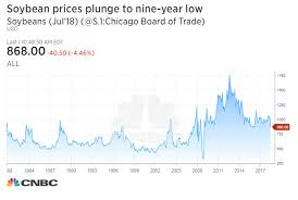 Soybean Futures Price Chart Soybean Prices Drop To Nine Year Low On Us China Trade War Fears