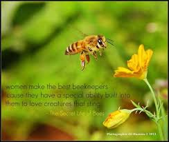 The Secret Life Of Bees By Sue MonkKidd Quotes Pinterest Beauteous Quotes In The Secret Life Of Bees