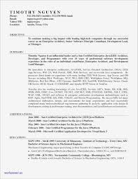 Ats Resume Template Free Download Ats Friendly Resume Template Samples Business Document 24