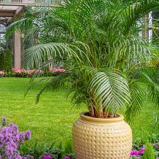 We are giving away two free tickets to longwood gardens! Longwood Gardens