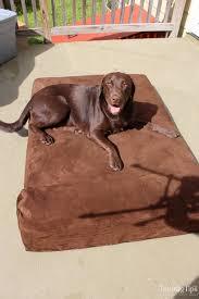 big barker dog beds. Brilliant Barker Big Barker Dog Bed Review Intended Beds S