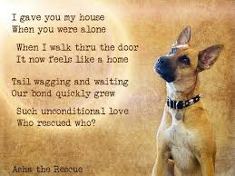 Rescue Dog Quotes Impressive Dogs Poems